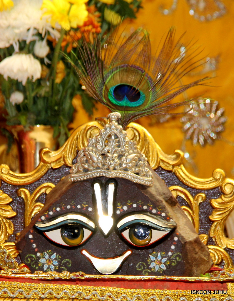 ISKCON Juhu Mangal Deity Darshan on 30th Dec 2016 (20)