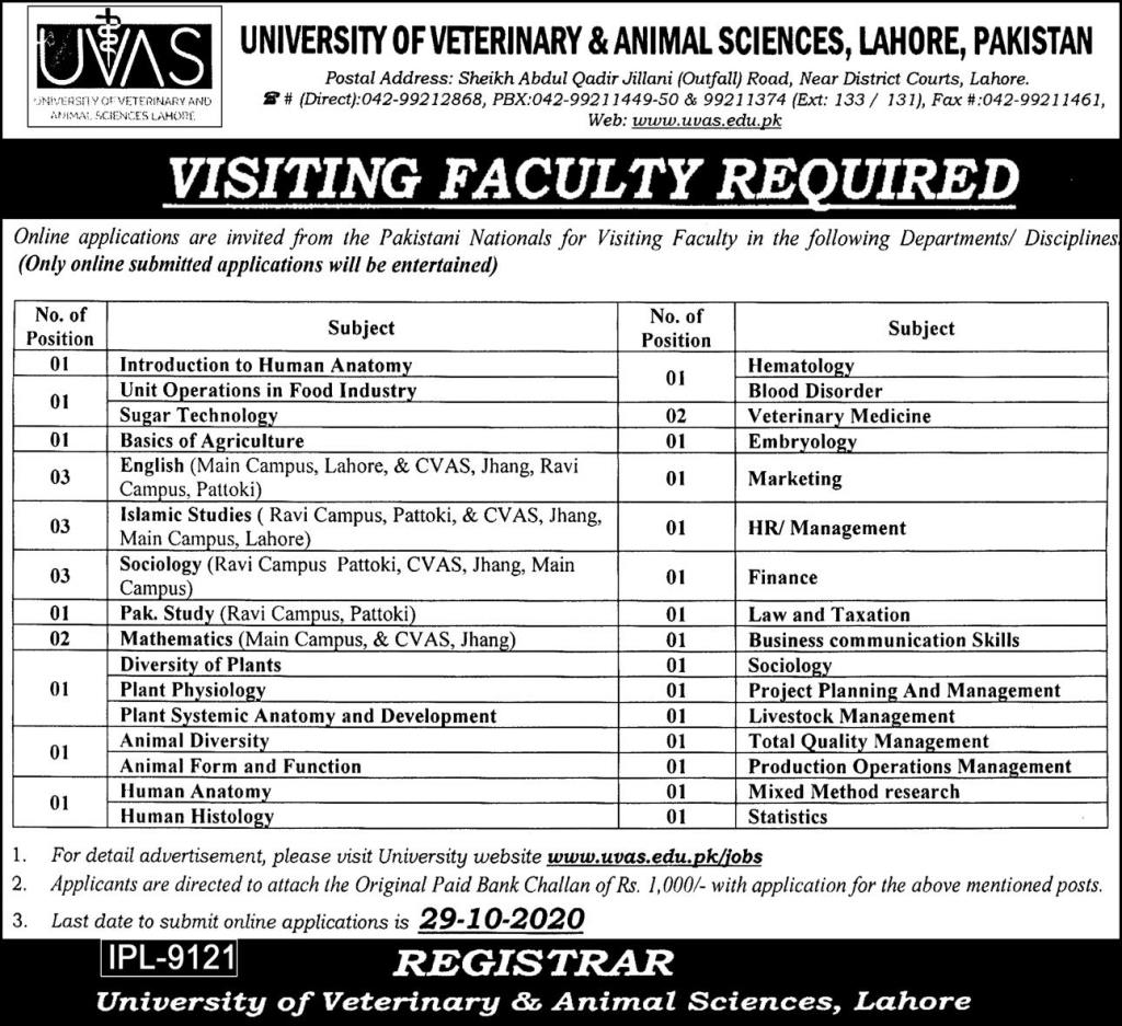 University Of Veterinary And Animal Sciences Jobs October 2020