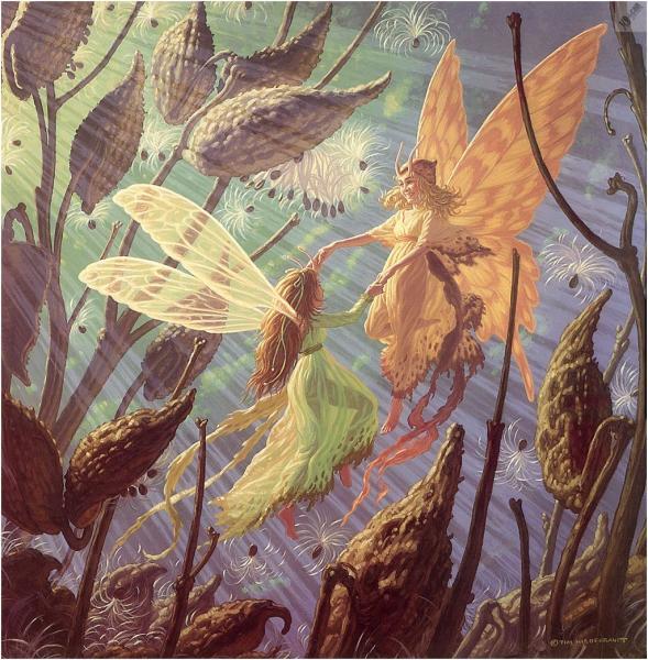 Fairy Folk, Fairies 1