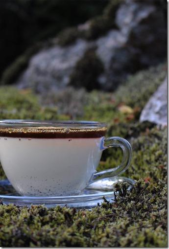 Bild från sidan på den genomskinliga kaffekoppen med vaniljpannacotta och kaffe-gelén.