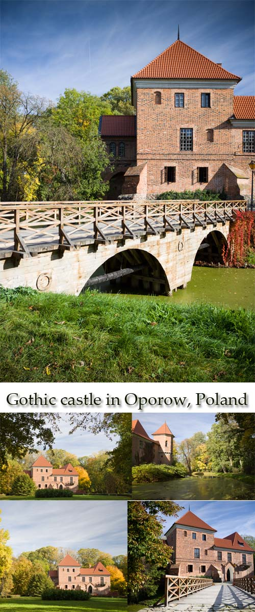 Stock Photo: Gothic castle in Oporow, Poland