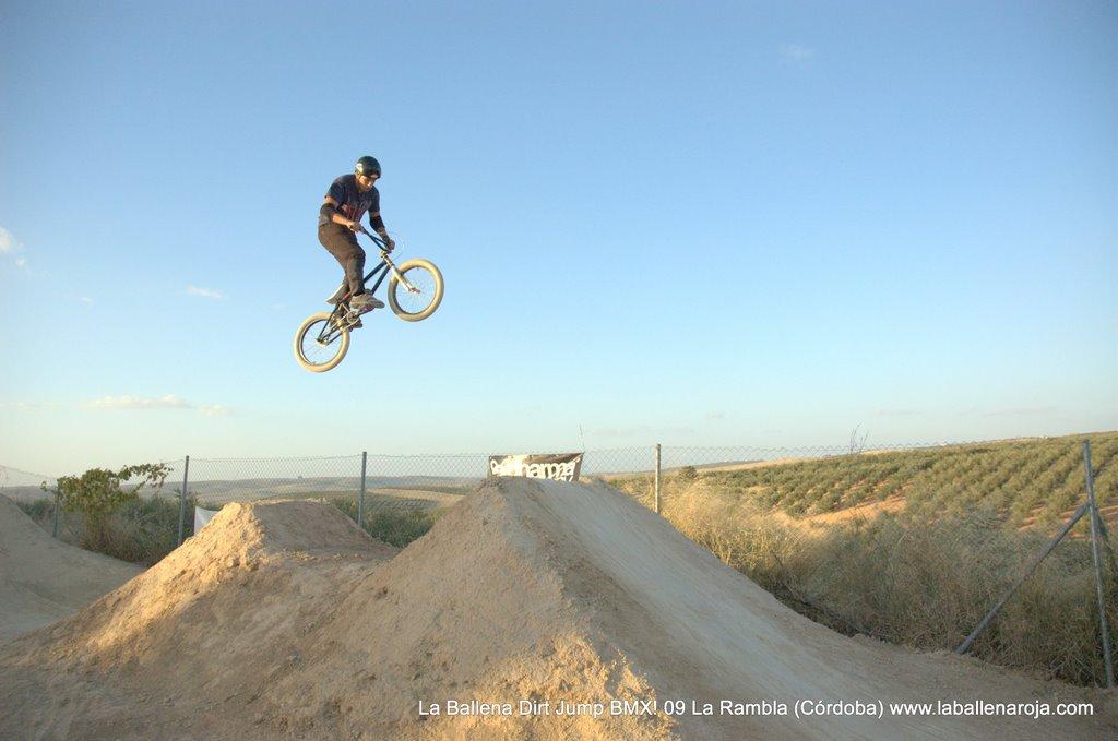 Ballena Dirt Jump BMX 2009 - BMX_09_0125.jpg