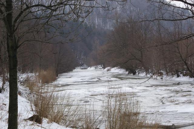Zajęcia terenowe 29 lutego 2012 - DSC06173_1.JPG