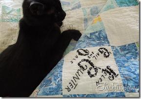 duncan (quilt cat) (4)