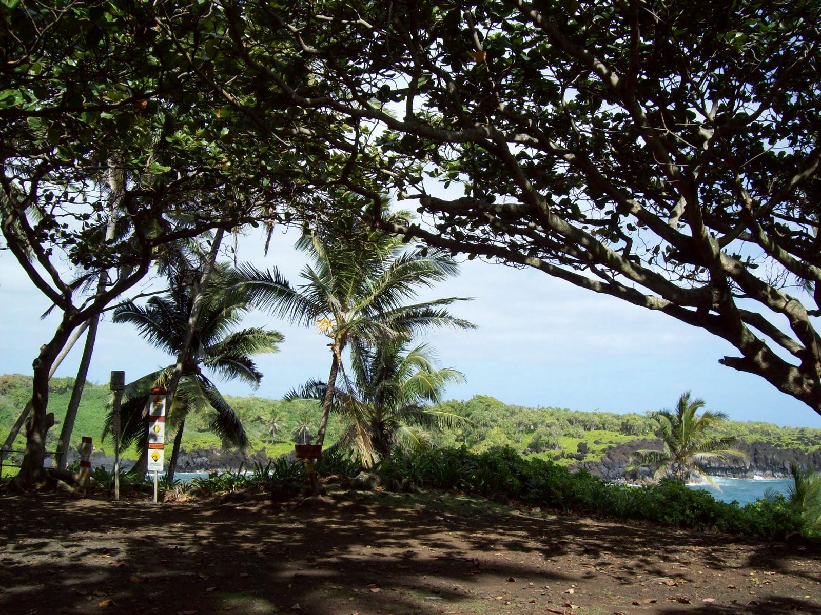 Hawaii Day 5 - 100_7444.JPG