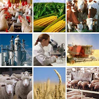 agribusiness, agro-industry, agriculture