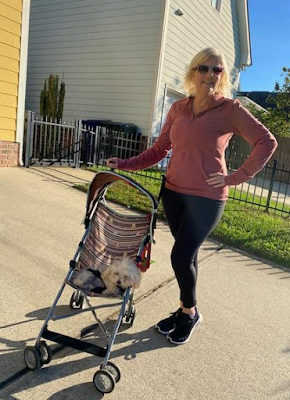 dog in stroller with woman wearing Zyia Activewear
