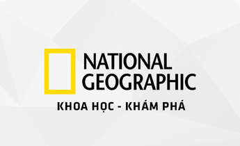 kênh National Geographic HD