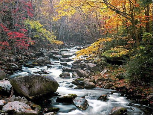 Little river in autumn.jpg