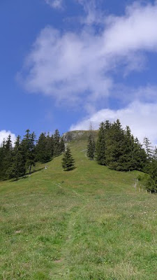 TCC 2015-Final du Mont Baron