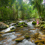 Majestic_mountains_rainforest_streams_and_rockpools_-_MG_0599.jpg
