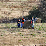 Tower Hunt, November 2014 - IMG_4913.JPG