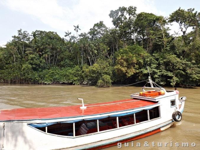 Ilha de Combu