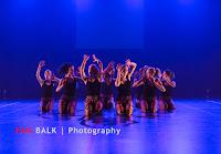 Han Balk Voorster Dansdag 2016-4035.jpg