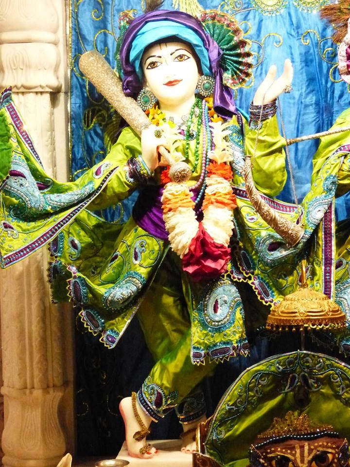 ISKCON New Govardhan Deity Darshan 01 Mar 2016 (32)