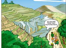 Рисові тераси у Китаї