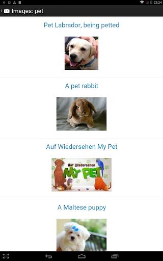 Shwebook Dictionary Pro 5.2.2 screenshots 14