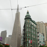 pyramid building in San Francisco in San Francisco, California, United States