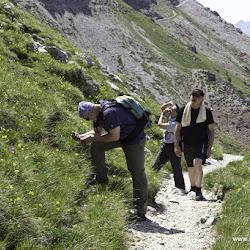 Wanderung Rosengarten Hirzelweg 03.07.15-7506.jpg