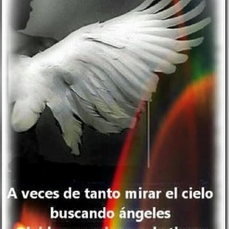 Los ángeles vienen con forma humana