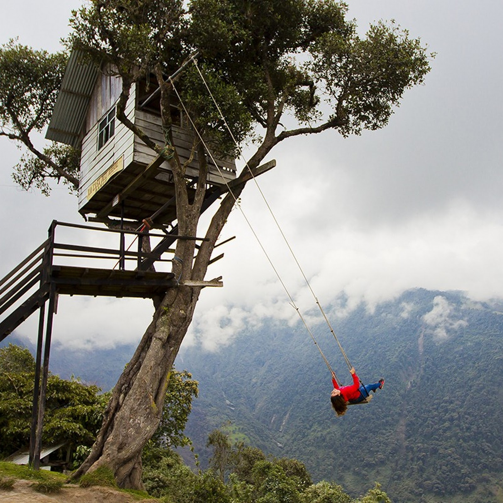 The Swing of Casa Del Arbol, Ecuador
