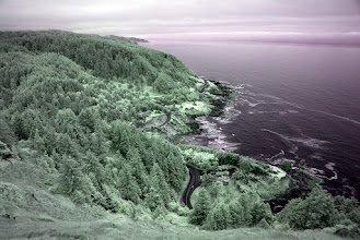 Photo: Cape Perpetua, Siuslaw National Forest Alternate color map