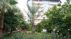Фото 3 Elysee Garden Familu Suite Hotel