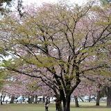 2014 Japan - Dag 8 - tom-SAM_0508-0013.JPG