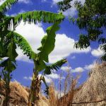 Dedza Village 2041516066.jpg