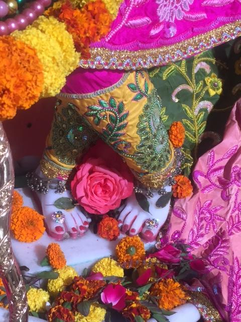 ISKCON Raipur Deity Darshan 02 Jan 2017 (5)