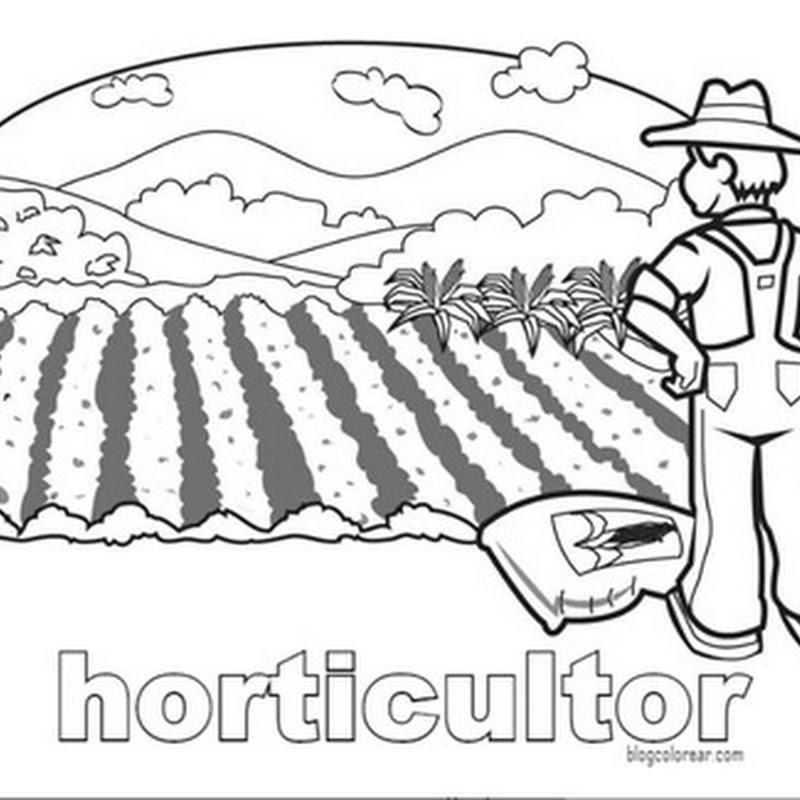 Colorear dibujos agricultores