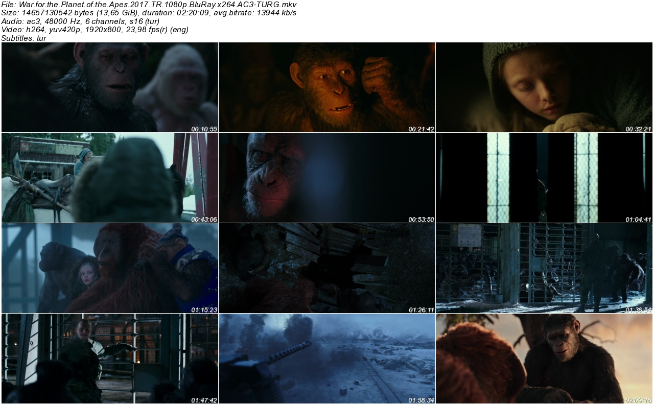 Maymunlar Cehennemi Savaş 2017 - 1080p 720p 480p - Türkçe Dublaj Tek Link indir