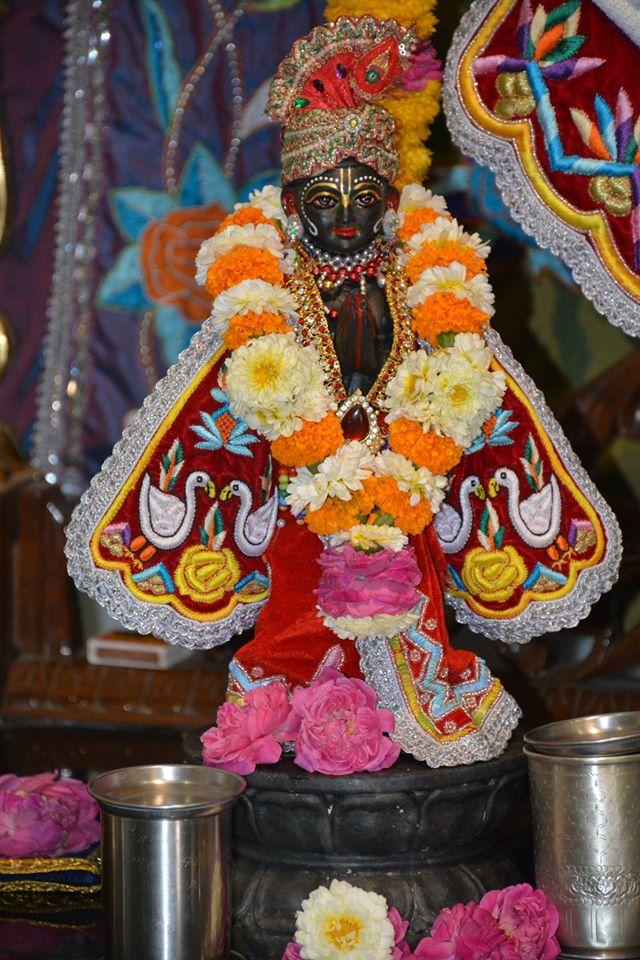 ISKCON Ujjain Deity Darshan 04 April 2016  (12)