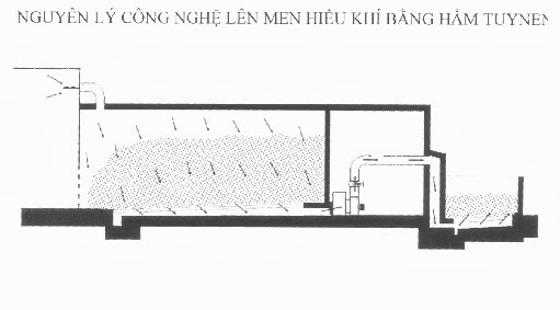 cong_nghe_len_men