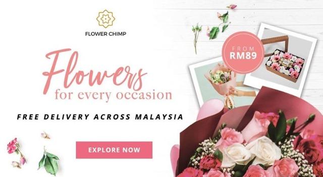FLOWER CHIMP 2