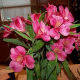 Bouquets - 101_0911.JPG
