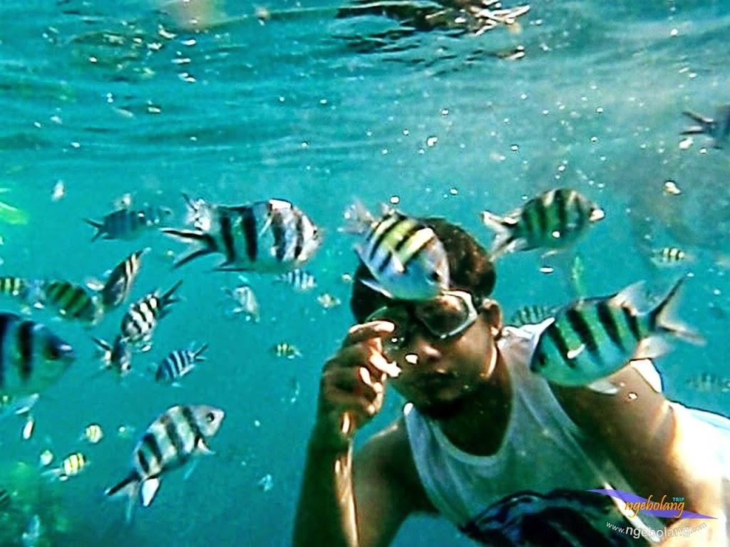 explore-pulau-pramuka-olp-15-16-06-2013-17