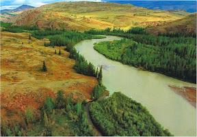 Altai