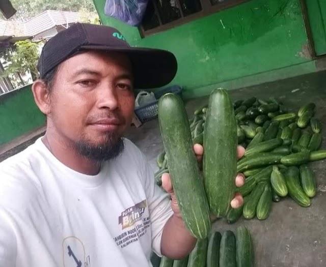 Pandemi Masih Berlangsung, Petani Muda Kreatif Asal Binuang Tetap Berkegiatan Pertanian