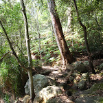 Rocky section on Warrimoo Track (119008)