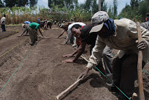 Farmers' Training Centres in Ethiopia