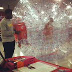 Hamster ball, Instagrammed