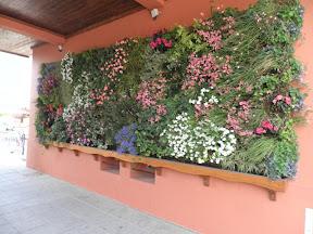 mur vegetal prés du barrage de Serre Ponçon