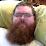 Scott Jensen's profile photo
