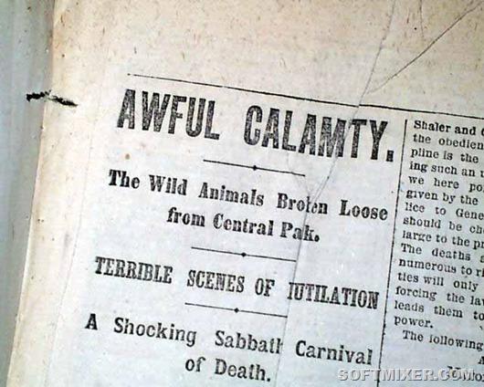Central-Park-Zoo-Escape-Hoax