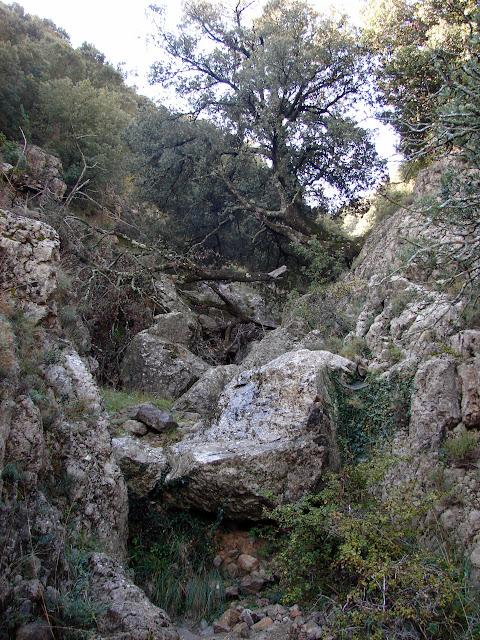 Barranc de Salvassoria