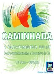 CSRDOTA - Caminhada 01.11.18
