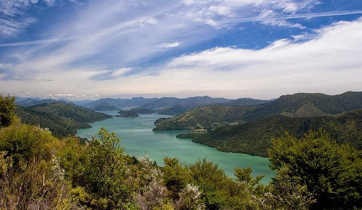 Queen Charlotte Track (25 Best Treks in the World).