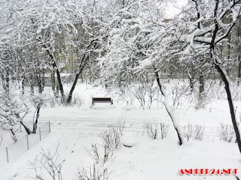 15+ Những hình ảnh mùa đông đẹp nhất thế giới hiện nay