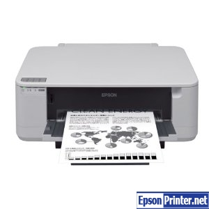 How to reset Epson PX-K100 printer